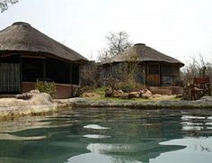 Umlani Bush Camp - our honeymoon hotel in 2013... need to go back!!