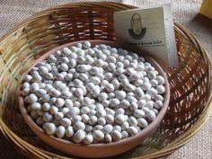 White beans. Rotonda. Italy