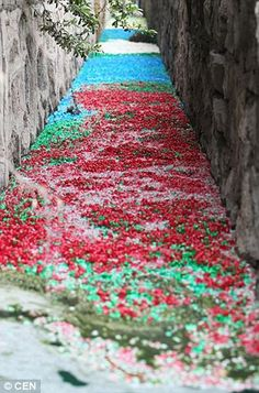 Chinese sewer transformed into a sea of color after dumping of millions of pill capsules. Wow.