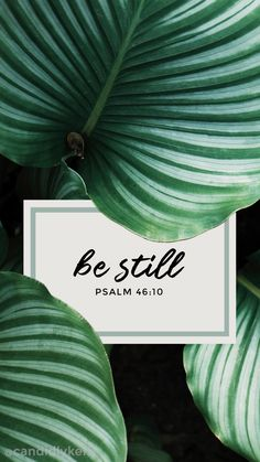 Be Still Psalm 46:10 bible quote leaf palms inspirational calming quote 2017 wallpaper you can download for free on the blog! For any device; mobile, desktop, iphone, android!