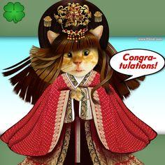 Greting card, congratulations, nice cute cat, kawai