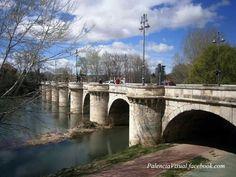 Puente Mayor. Palencia.