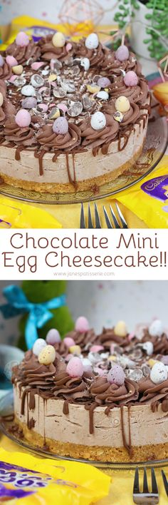 A Buttery Biscuit Base topped with a Mini Egg Chocolate Cheesecake Chocolate Whipped Cream and even more Mini Eggs! Chocolate Topping, Chocolate Cheesecake, Cake Chocolate, Easter Chocolate, Easter Cheesecake, Cheesecake Recipes, Mango Cheesecake, Baking Recipes, Snack Recipes