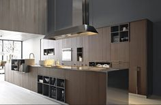 sleek-contemporary-kitchen-cabinets
