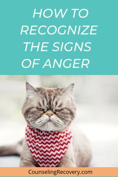 In this video learn how to manage anger so your relationships stay healthy. Conflict resolution requires anger management and communciation skills, otherwise relationships don't last or stay healthy. Learn more here! #anger #angermanagement #relationships #conflict Anger Management Quotes, How To Control Anger, Mental Health Resources, Conflict Resolution, Make A Person, Best Relationship, Social Work, Inner Peace, Better Life