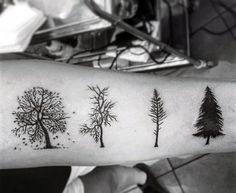 Black Ink Men's Pine Tree Tattoo Of Seasons