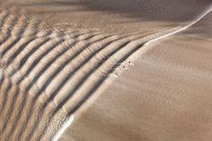 Full Feeling Simplicity | efdol: Photo by Scott Dickerson Location:...