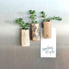 Succulent Wine-Cork Magnets