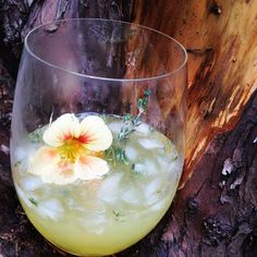#AnAppealingPlan Tangerine Thyme #Cocktail with handcrafted Thyme Simple Syrup