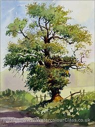 Image result for Watercolor Trees