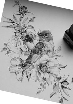 Bird Drawings, Art Drawings Sketches, Animal Drawings, Tattoo Drawings, Future Tattoos, Love Tattoos, Beautiful Tattoos, Animal Sketches, Bird Art