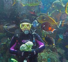 Aquarium+of+the+Pacific