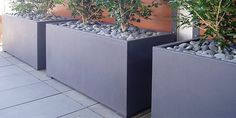 Dark grey rectangle pots planted in a row