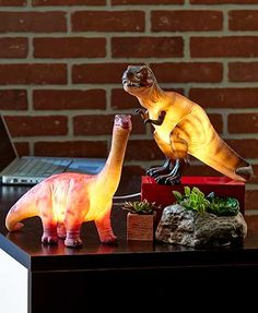 "This Dinosaur Table Lamp adds prehistoric fun to your room's decor. Each dinosaur has a realistic look. Makes an interesting accent lamp or a fun night light. Includes a 7-Watt bulb. In-line on/off switch. T-Rex, 6-1/2""W x 10-1/2""D x 9""H. Long Neck, 4""W"