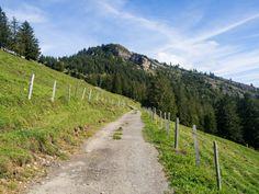Von Goldau nach Sattel bin ich auf einer abwechslungsreichen Wanderung auf der dritten Etappe des Schwyzer Höhenweg unterwegs. Der Bus, Country Roads, Flims