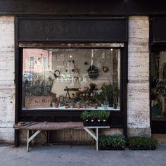 339 flower shop design, flower bar, boutique deco, flower boutique, store d Cafe Design, Store Design, Cool Succulents, Flower Shop Interiors, Flower Cafe, Flower Shops, Flower Shop Design, Decoration Vitrine, Shop Facade