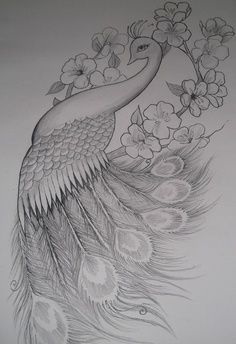 Beautifull drawing