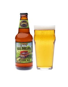 All Day IPA | 10 Best Beers To Drink On IPA Day