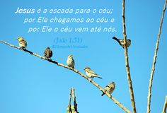 Momento Versículos: Jesus é a escada para o céu