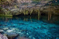 7 adventures to experience in Playa del carmen