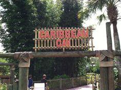 Island Theme, Caribbean, Neon Signs, Fun, Hilarious