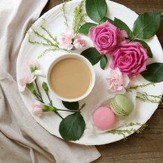 お花とティーのステキ写真がどんどん撮れる1週間 6日目 | TEA CHIC ティーシック 紅茶のあるひとときをもっと素敵に