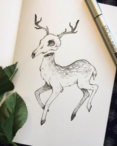 """8,528 Likes, 52 Comments - @feefal on Instagram: """"Cute lil death deer❤️ fun side note : deer skulls don't actually look like this!! In reality…"""""""