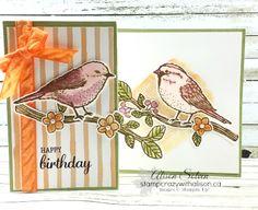 Best Birds Stamp Set & Birds & Blooms Framelits Z Card 4 www.stampcrazywithalison.ca