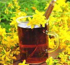 Prirodni čaj koji vraća hormone u ravnotežu Anti Anxiety Herbs, Best Herbs For Anxiety, Natural Essential Oils, Natural Oils, Herbal Remedies, Home Remedies, Alternative Treatments, Depression Treatment, Exotic Plants