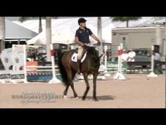 Training videos for Adobe Photoshop Horse Training Tips, Horse Tips, Trail Riding Horses, George Morris, Horse Barns, Horse Stalls, Equestrian Problems, Dressage Horses, Horse Trailers