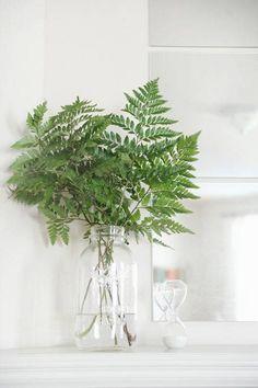 Leaves in a vase, fern branches, greenery, decor Green Centerpieces, Part Shade Plants, Fern Bouquet, Flower Power, Vase Transparent, Modern Tropical, Diy Décoration, Arte Floral, Color Schemes