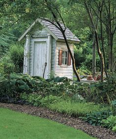 Charming old shed in a wonderful, wooded garden.
