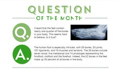 How many bones are in your feet? Read more in our March newsletter: Podiatry, Read More, Bones, March, Reading, Reading Books, Mac, Dice, Legs
