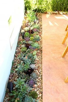 Mexican Pebble used to fill voids between newly planted succulents.  Also a good way to keep dirt and dust down.                                                                                                                                                                                 More