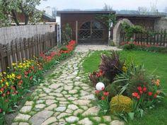 svokruskine tulipany