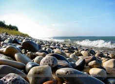 Petoskey Stone on Beach