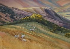 Grazing on Bank Peninsula, NZ. Pablo Picasso, Impressionism, Pastels, New Art, Watercolors, New Zealand, Original Artwork, Earth, Sky