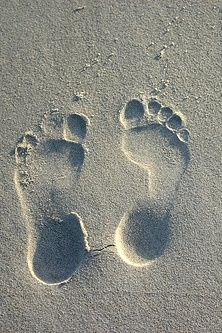 Teaching Children About Digital Footprints - Don't leave out the positives of a digital footprint!