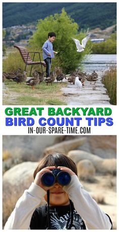 Great Backyard Bird Count Tips for Kids. Fun tips to enjoy bird watching and counting with your child. Great Backyard Bird Count, Backyard For Kids, Backyard Birds, Backyard Games, Outdoor Games, Outdoor Ideas, Water Games For Kids, Indoor Activities For Kids, Family Activities