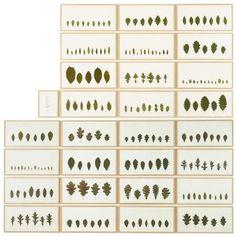 herman de vries - 'quercus', 1992 oak leaves collected at the Royal Botanic Garden, Edinburgh mounted on paper