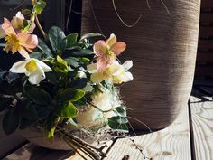 paradies und das: Ausflug über den Hengstpass nach Admont Planter Pots, Simple, Life, Paradise