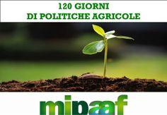 120 giorni di politiche agricole by Ministero delle politiche agricole alimentari e forestali via slideshare