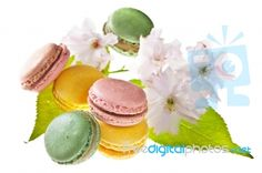 Colourful macaroons tastefully (and tastily!) photographed by -Marcus-. This image is available to download for free or purchase in high resolution from FreeDigitalPhotos.net