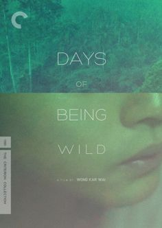 Days Of Being Wild - Beautiful, compelling, profound; pure Wong Kar-Wai. (10/10)