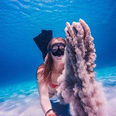 GoPro underwater shot
