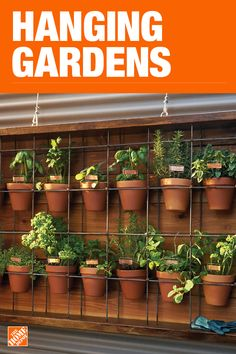Outdoor Decorating Ideas Vertical Gardens and Hanging Gardens is part of Vertical garden - Vertical gardens are an outdoor decorating trend appearing in our Patio Style Challenge series Here's a round up of the best vertical gardens Hanging Plants, Indoor Plants, Hanging Gardens, Succulents Garden, Garden Plants, Shade Garden, House Plants, Herb Garden, Vegetable Garden