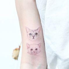 Kittens by Mini Lau