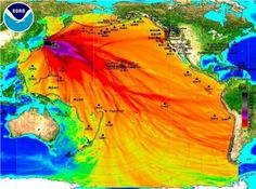 ❥ Fukushima now in State of Emergency, Leaking 300 Tons of Radioactive Water into the Ocean Daily