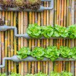 16 Space-Saving Vertical Garden Ideas