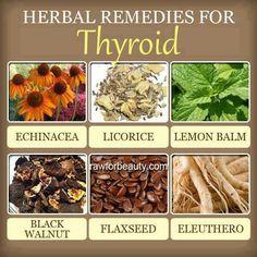 herbal remedies for thyroid